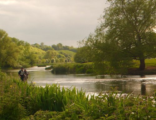Salmon and sea trout angling regulations for 2018