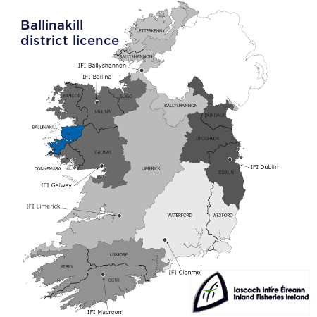 district-ballinakil
